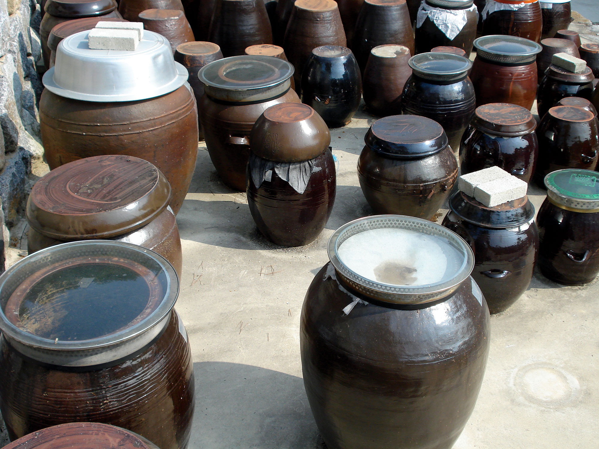 Ceramic jugs of various sizes fermenting kimchi