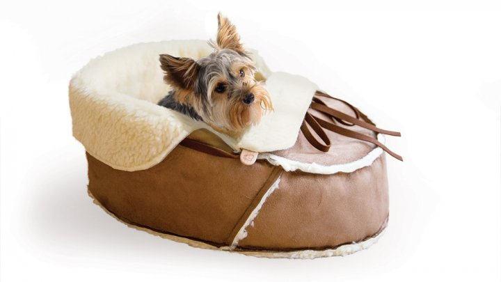 Napping Jojo, Moccasin pet bed