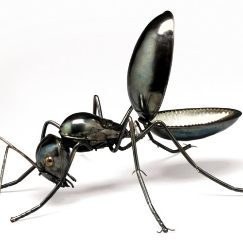 Elizabeth Goluch's Carpenter Ants (Work Is Play)