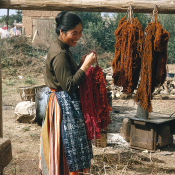 Alice Kagawa Parrott drying yarn